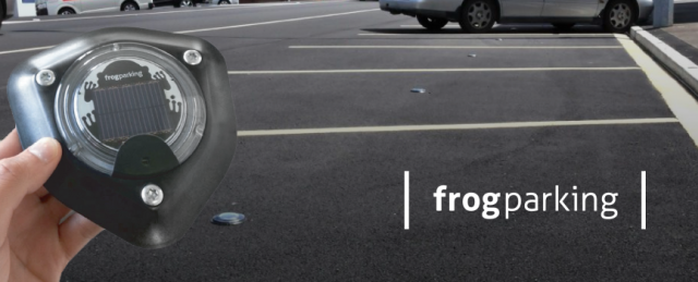 Frog-Page-Header2.png